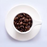 دان قهوه عربيكا